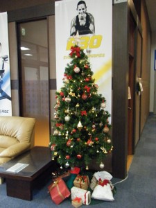 MAX クリスマスツリー